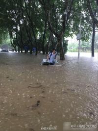 무한 대학교 캠퍼스 물에 잠겨...폭우피해 심각