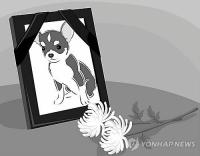 일본업체, 애완동물 장례휴가 허용