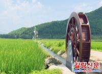 환인현 전국에서 처음 벼예약재배기지 건설