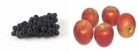 같이 먹으면 건강에 좋은 음식 6가지