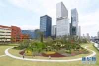 G20 항주 정상회의 개막을 앞둔 항주시 모습