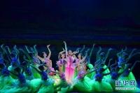 제25회 중국 금계백화영화제 개막