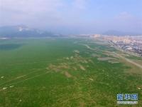 국내 최대 담수호 파양호 수위 12메터 이하...대초원으로 변신