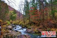 """환인현 2016 """"전국삼림유람시범현""""으로"""