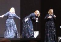 아델, 콘서트장에 박쥐 난입..무대서 혼비백산