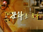 TV문화를 품다2016-11-25