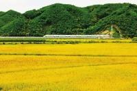 화룡시 농업의 안정적발전 확보… 농업총생산액 16억 5000만원