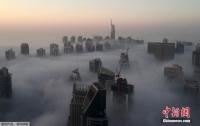가장 핫한 관광지 두바이의 구름바다