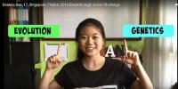 싱가포르 17세 소녀, 레고 활용 영상으로 3억 '저커버그 장학금'