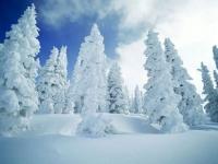 장백산국제빙설축제 새해 1월 20일부터 시작