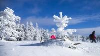 [포토]사진으로 보는 로리커호의 환상적인 설경