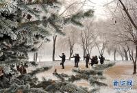 흑룡강성 목단강시의 환상적인 상고대 풍경, 꽁꽁 얼었네