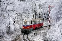 사진사가 찍은 겨울 숲, 환상적인 '겨울왕국' 같네