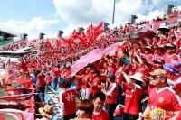 박태하호, 올해도 연변축구 '새로운 역사 기록' 한뜻