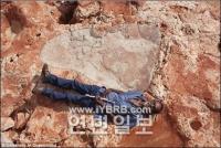 성인 남자 키 크기 세계서 가장 큰 공룡발자국 발견