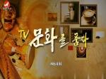 TV문화를 품다 2017-03-31