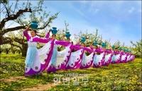 """고목에 피운 민족의 꽃 """"아리랑"""""""