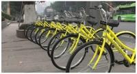 반년만에 문 닫은 자전거대여 업체
