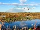 흑룡강의 도로하습지, 사계절의 쾌적한 풍경
