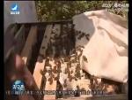 지구촌 뉴스 2017-08-18