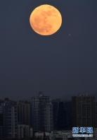 """[포토]  """"슈퍼문"""" 곤명시의 밤하늘 아름답게 장식"""