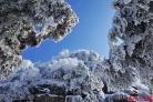 눈 내린 여산산, 중국 명산에 펼쳐진 '무릉도원'