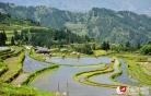 중국 귀주 종강의봄, 알록달록 계단식 밭 눈길