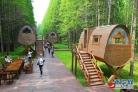 여름철 멋있는 이곳! 중국 강소 '황해국가삼림공원'