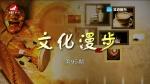 TV문화를 품다(한어자막판) 2018-07-06