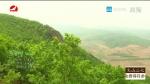 [요청한마당]초록빛 노래-김홍련