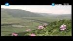[요청한마당] 두만강 천리 - 김미화