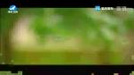 [요청한마당] 꽃우산 꽃양산 - 안룡수 마복자