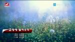 [요청한마당]고향에 돌아오라-김지협