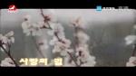 [요청한마당] 사랑의 길 -  윤명산 차미령