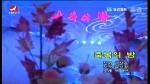 [요청한마당]축복의 밤-박연