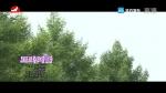 [요청한마당] 도라지꽃-박은화