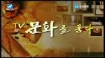 TV문화를 품다 2019-04-05