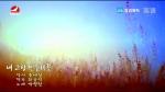 [요청한마당] 내 고향 민들레꽃-박향란