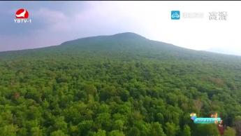 최적의 관광명소(위호령국가삼림공원) 연변 2019-8-22