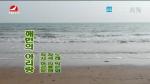[요청한마당]해변의 아리랑-박은화