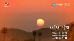 [요청한마당]타향의 달밤-김지협