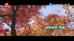 [요청한마당]모아산의 가을-최승화