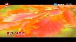 [요청한마당]빨간 단풍잎-김선희