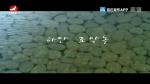 [요청한마당] 하얀 조약돌-김소연