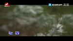 [요청한마당]눈꽃-김문우