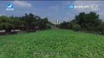 지구촌 뉴스 2020-01-13