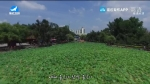 지구촌 뉴스 2020-01-15