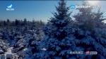 국내외 뉴스 2020-01-12