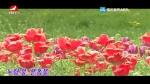 [요청한마당]노랑물 분홍물-정혜원