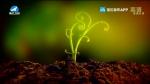지구촌 뉴스 2020-03-06
